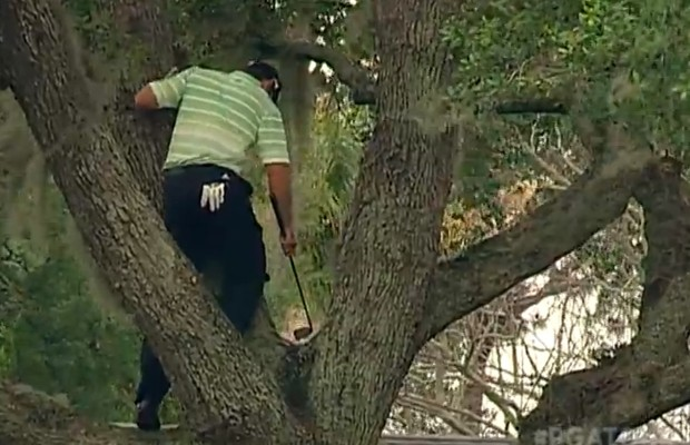 Golfing out of a tree? Sure, why not?